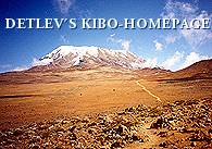 - Blick vom Saddle auf den Krater des Kibo 5.895 m -