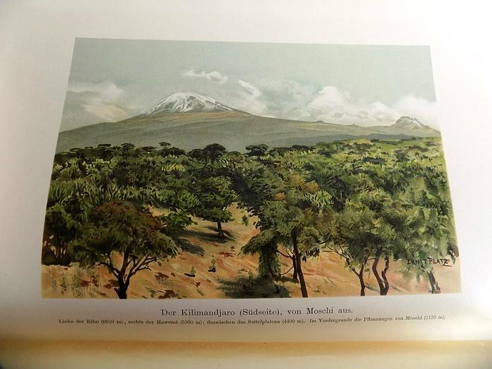 12. Der Kilimandjaro <br>Prof. Dr. Hans Meyer, Verlag Dietrich Reimer,<br><b>Kilimandjaro von Moshi</b>