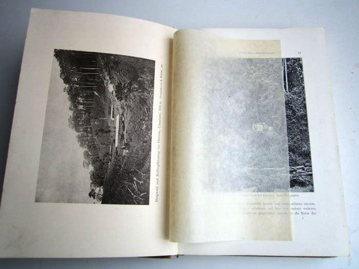 03. 1900 - Der Kilimandjaro, Prof. Dr. Hans Meyer, Verlag Dietrich Reimer, Berlin,<br><b>Eine Bildseite</b>