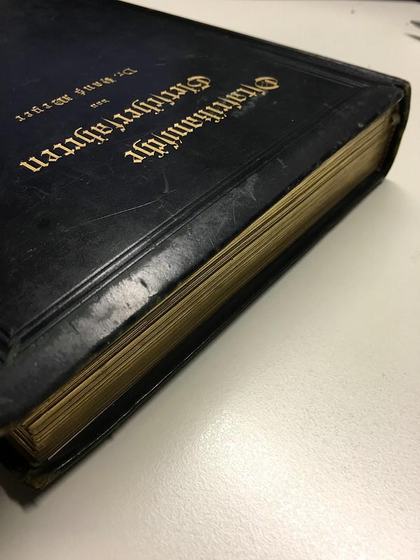 03. 1890 - Ostafrikanische Gletscherfahrten, Dr. Hans Meyer, Verlag Duncker & Humblot, Leipzig,<br>Prachtausgabe in Leder und mit Goldschnitt,<br><b>Der Goldschnitt</b>