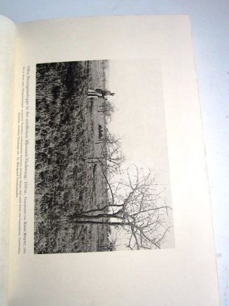 05. 1900 - Der Kilimandjaro, Prof. Dr. Hans Meyer, Verlag Dietrich Reimer, Berlin,<br><b>Eine Bildseite</b>