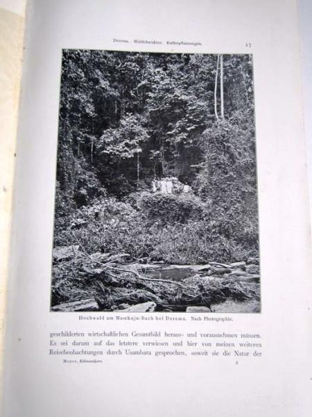 04. 1900 - Der Kilimandjaro, Prof. Dr. Hans Meyer, Verlag Dietrich Reimer, Berlin,<br><b>Eine Bildseite</b>